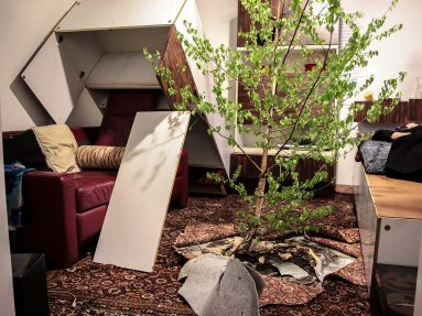 Trojan House/Curated Catastrophe Procedure, Studio C.A.R.E., 2016